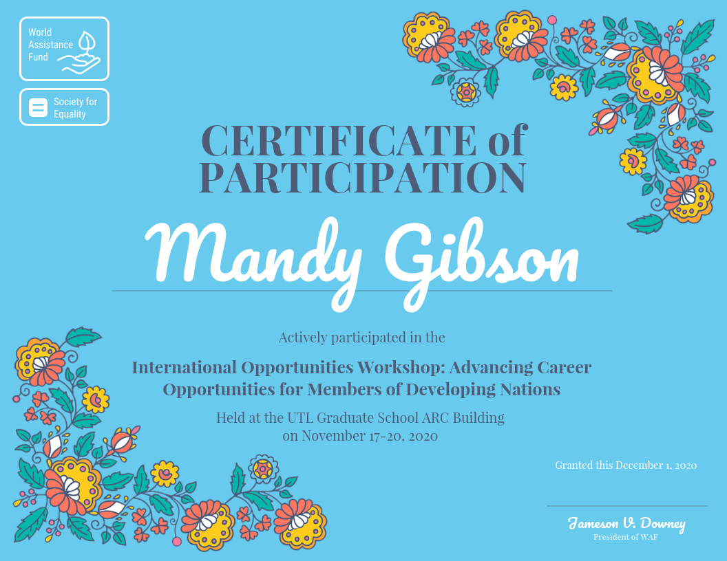 Certificate Of Participation Throughout Certificate Of Participation In Workshop Template