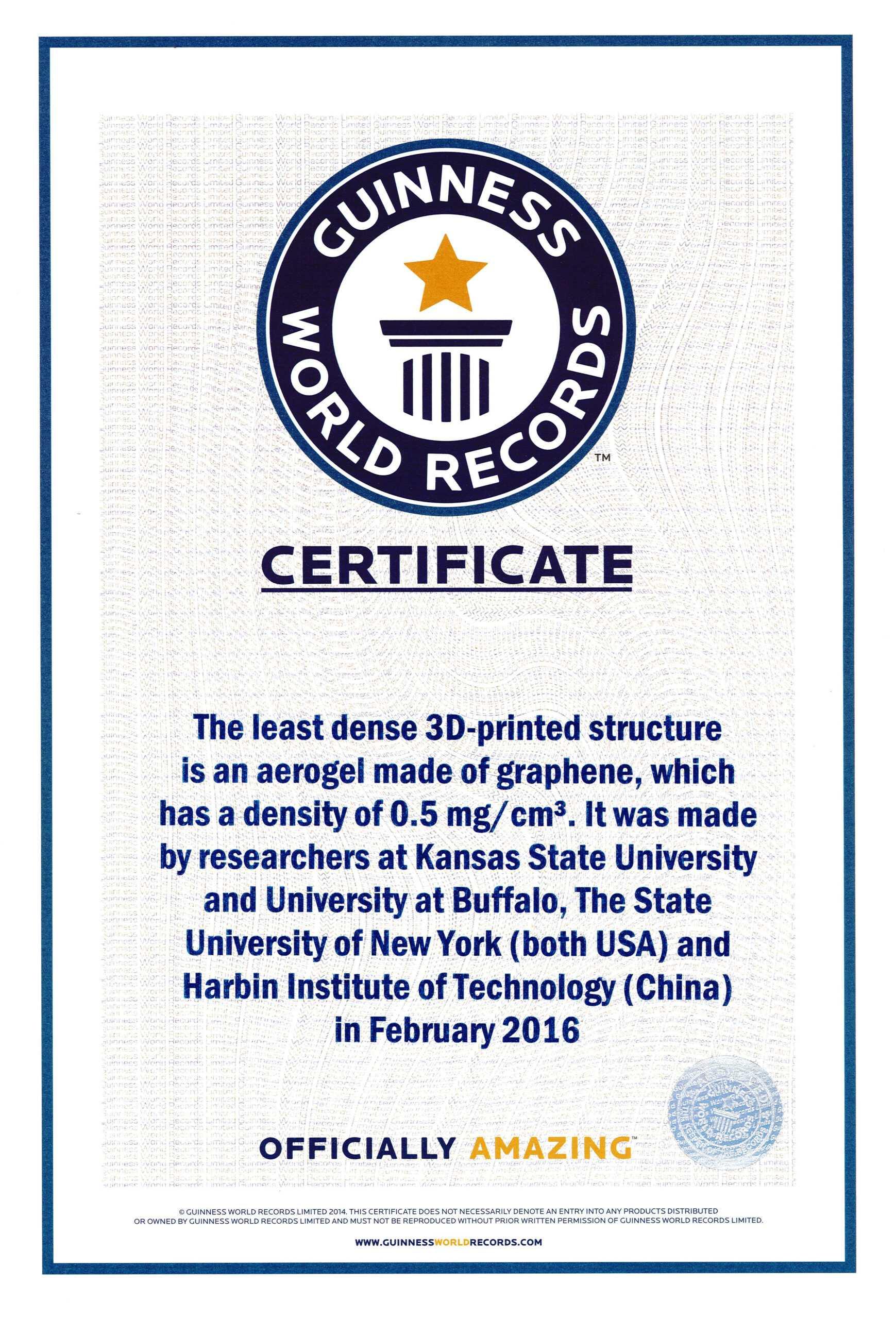 Fake Guinness World Record Certificate - Karati.ald2014 With Regard To Guinness World Record Certificate Template
