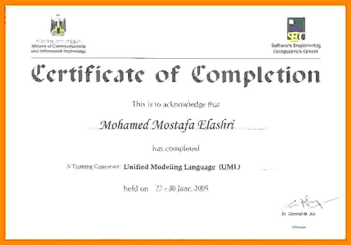 Printable Doc Pdf Editable Training Certificate Template Pertaining To Training Certificate Template Word Format