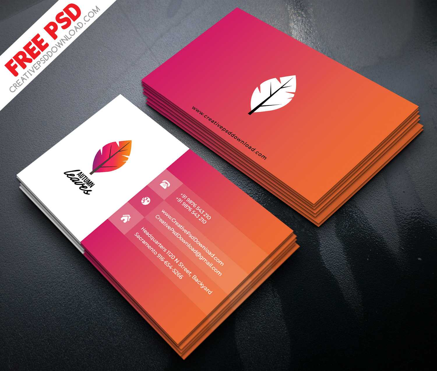 Professional Business Card Psd Free Download In Free Psd Visiting Card Templates Download