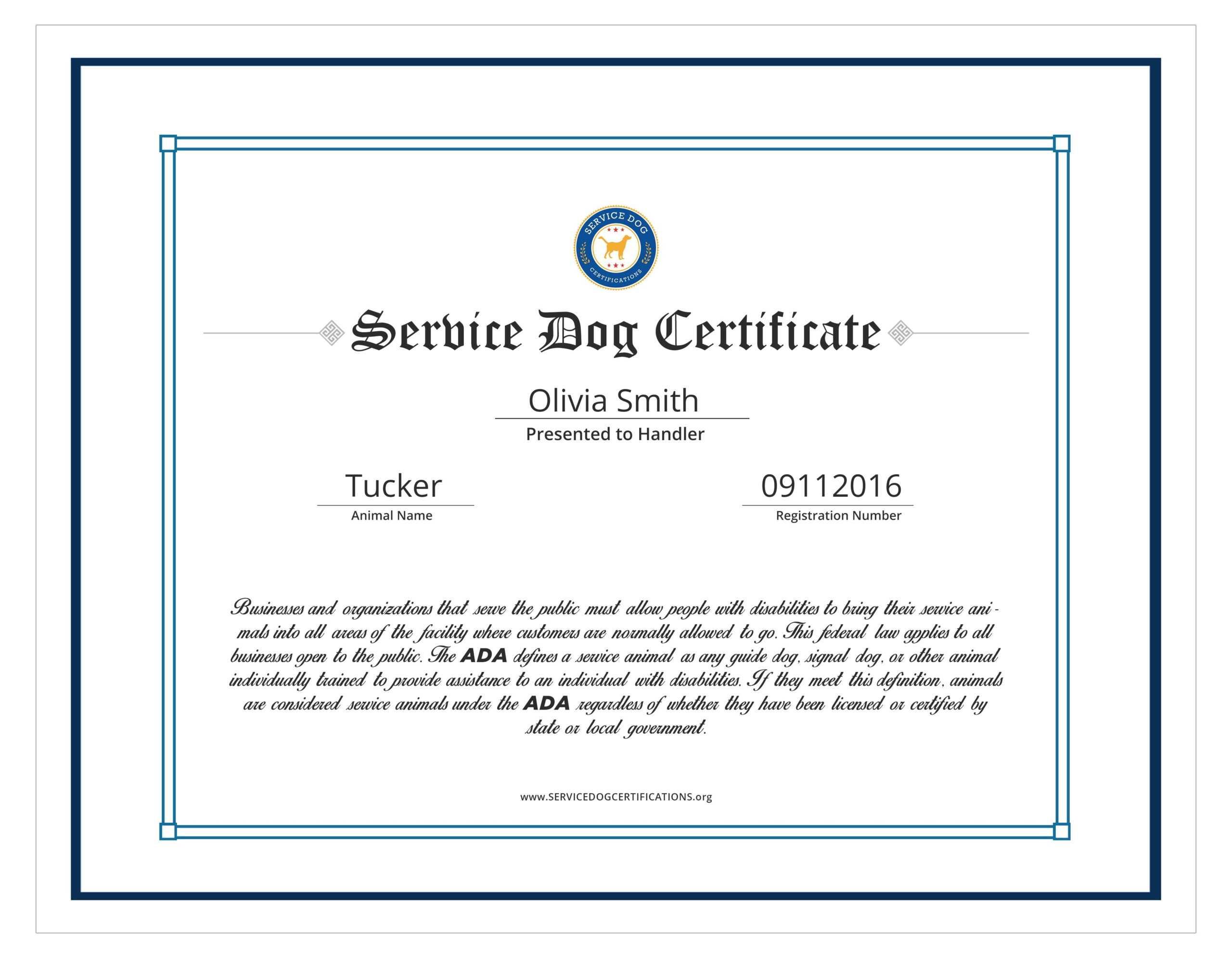 Service Animal Certificate Template - Carlynstudio Pertaining To Service Dog Certificate Template