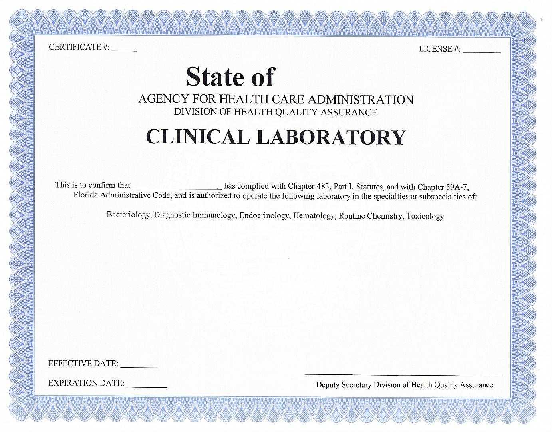 Testing Certificate Template – Certificate Templates Regarding Certificate Of License Template