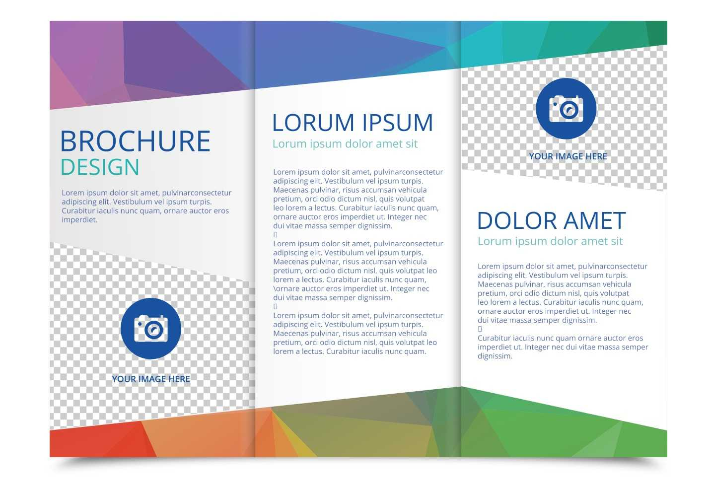 Tri Fold Brochure Vector Template - Download Free Vectors In 3 Fold Brochure Template Free Download